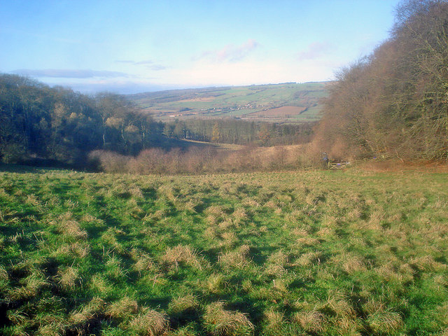Grassland and woodland on Dumbleton Hill