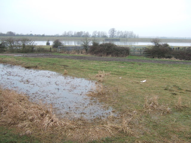 Rising flood water - The Ouse Washes at Mepal