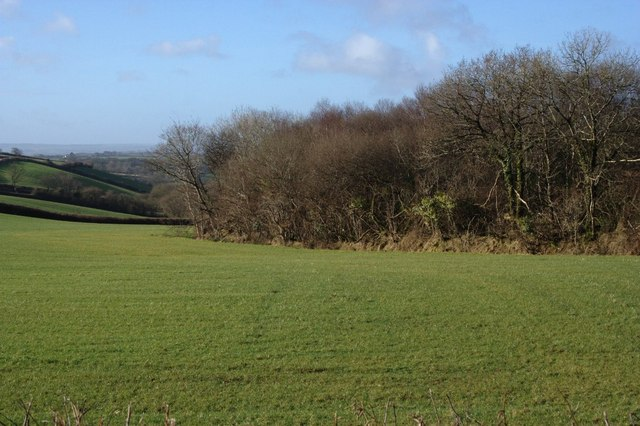 Valley by Peek Moor Cross
