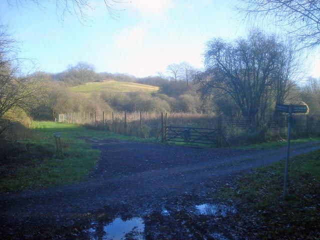 Path junction on Alderton Hill
