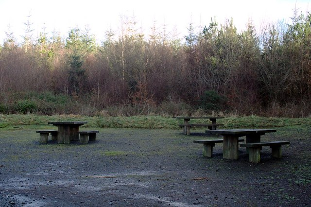 Picnic Area in Holsworthy Woods