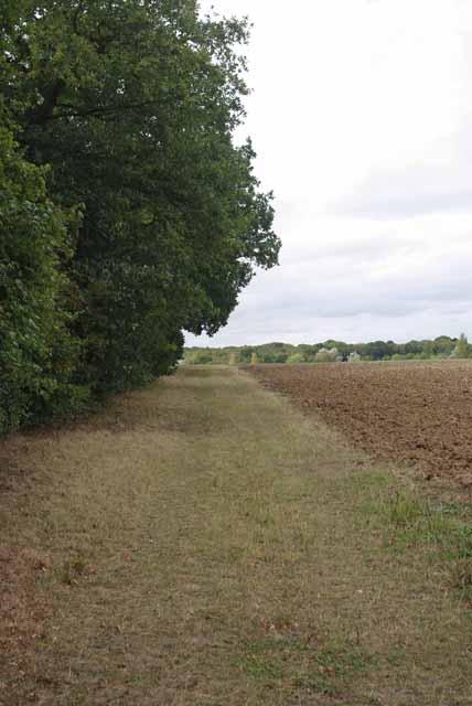 Path By Highfield Wood