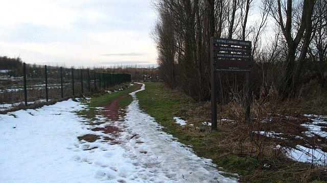 Whitrigg Community Woodland