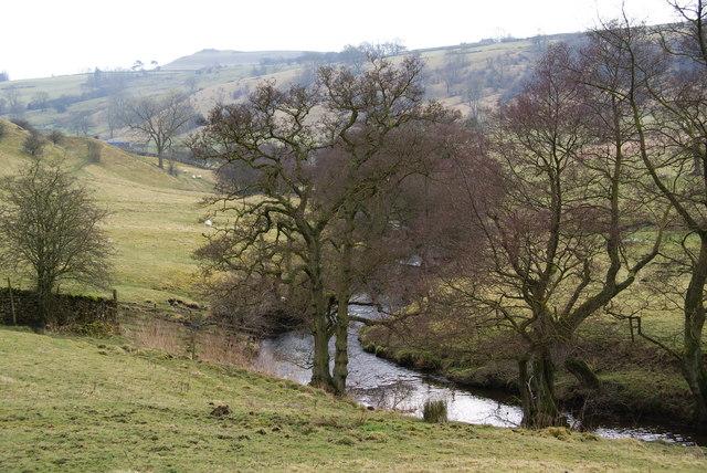 The River Dove