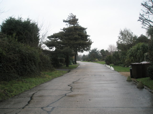 Mid section of a wet and windy Pigeonhouse Lane