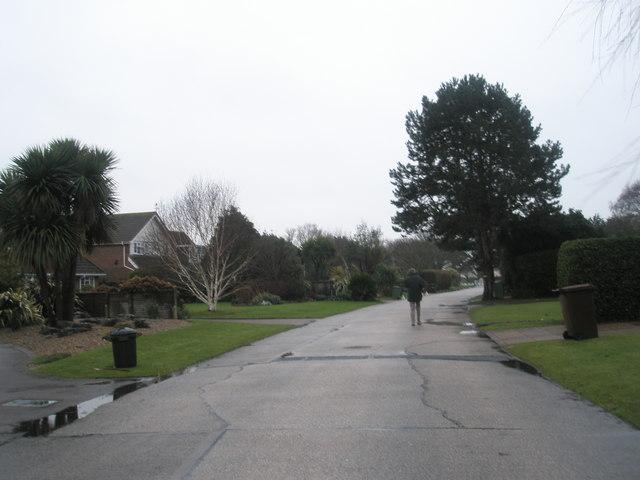 Lone pedestrian in Pigeonhouse Lane