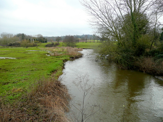 River Culm at Columbjohn