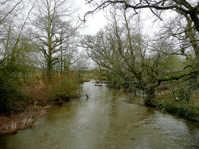 River Culm - downstream
