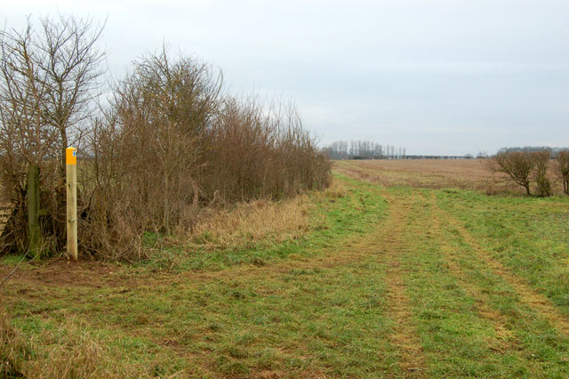Dog-leg in the bridleway near Top Farm