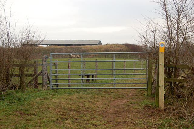 Looking southeast at a gate on the bridleway near Top Farm