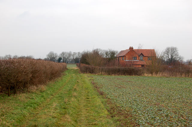 Looking north on the bridleway from Top Farm to Marton