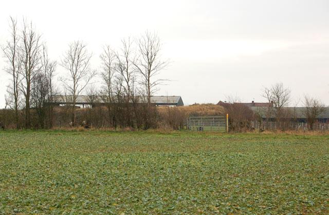 Looking southeast towards Top Farm
