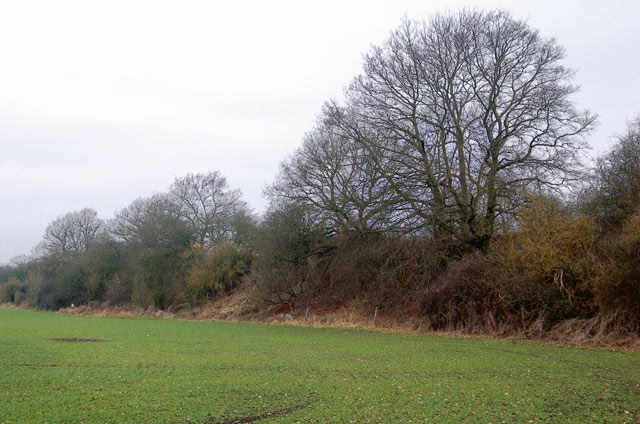 Embankment of disused railway south of Marton