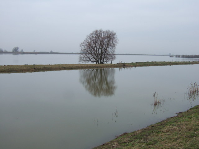 A grey day - The Ouse Washes north of Earith