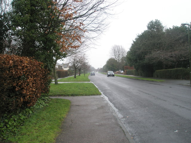 A wet and windy day in Vicarage Lane