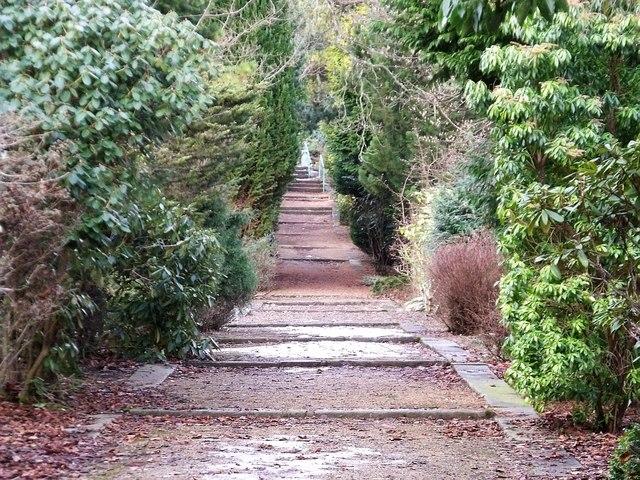 Colzium Estate woodland path.