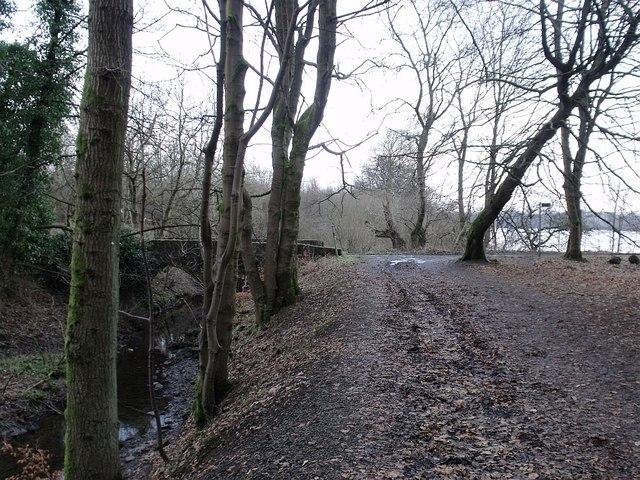 Colzium Estate, bridge to Riskend farm