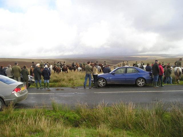 Exmoor: Meet of the Devon & Somerset Staghounds