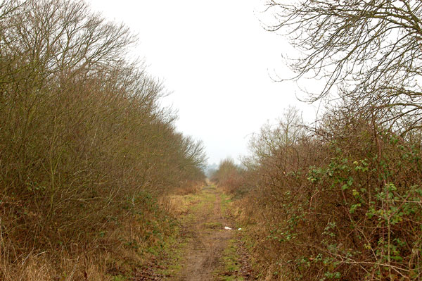 Looking southwest along trackbed of dismantled railway, Marton