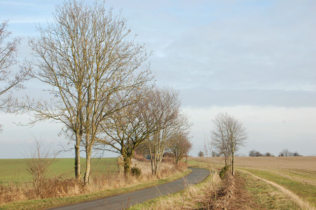 Shakers Lane passing south of Newfields Farm