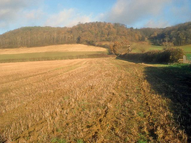 Arable land north of Alderton