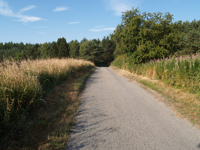 Lane at Broomley Fell