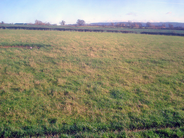 Mixed farmland south of Alderton