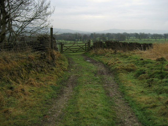 Track beside Withgill Knoll