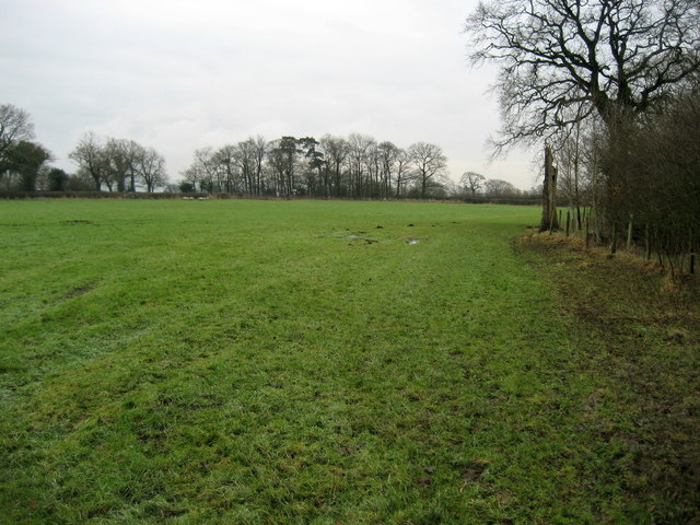Footpath approaching New Lane