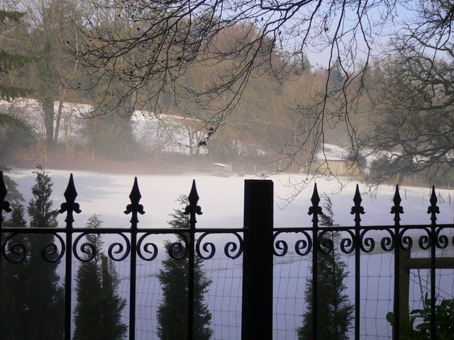 Paddock of snow and mist
