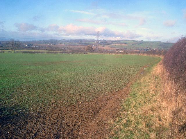 Arable land east of Great Washbourne