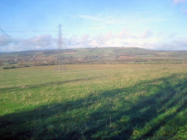 Grassland near Didcot Farm - 1