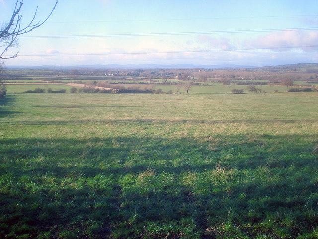 Grassland near Didcot Farm - 2