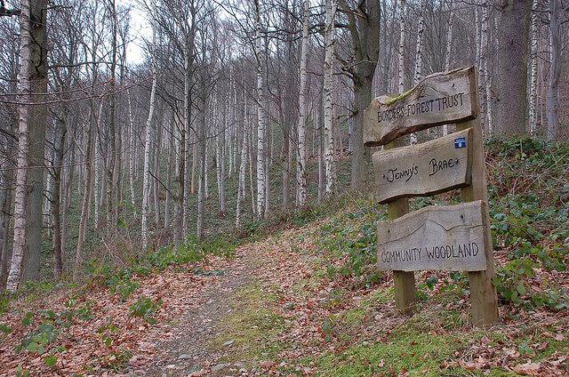 Woodland path on Janet's Brae, Peebles