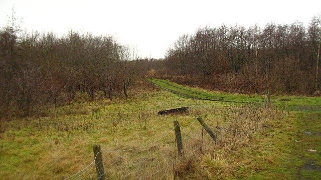Faskine Community Woodland