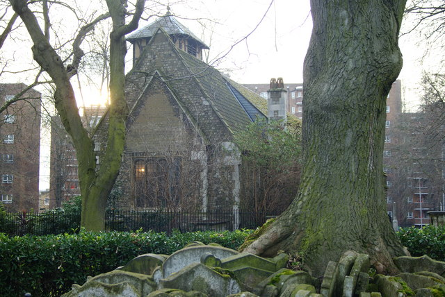 St.Pancras Old Church, and the Hardy Tree, London