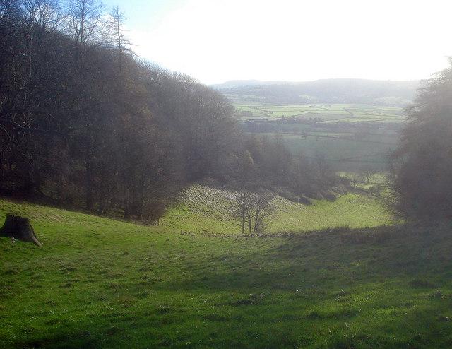 Gap in the woods on Oak Hill