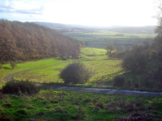 Estate road down the south side of Alderton Hill