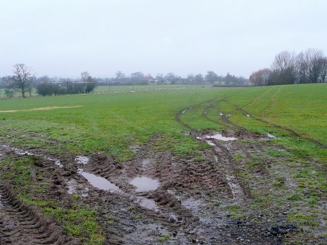Pastoral Worcestershire