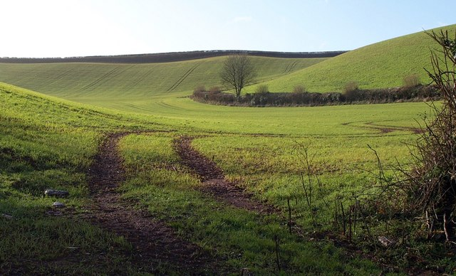 Combe near Brownscombe Wood