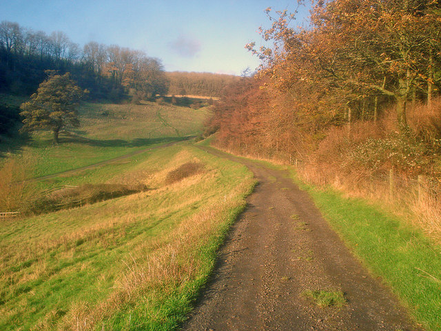 Track at the foot of Horse Bank