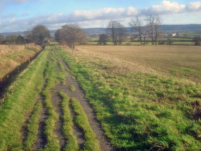 Farm road to Naunton Farm