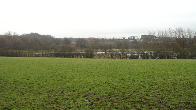 Grassland off Carnbroe Road