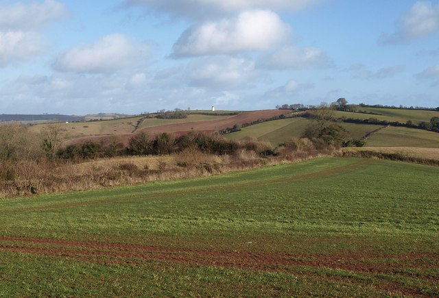 On Brownscombe Hill