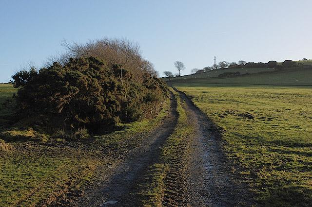 Track heading towards Hen Gaer