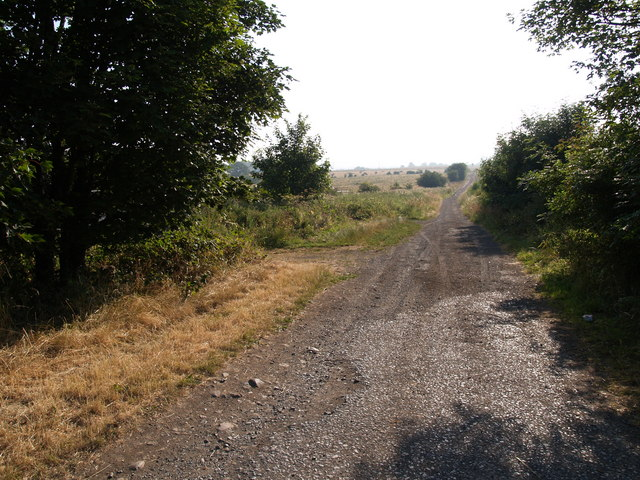 Track and Byway between Broomley and Old Ridley