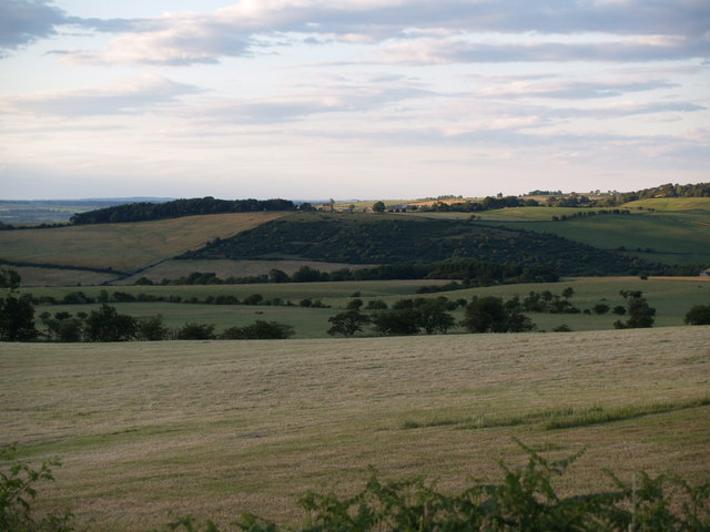 Looking across Whittonstall Common to Apperley Bank