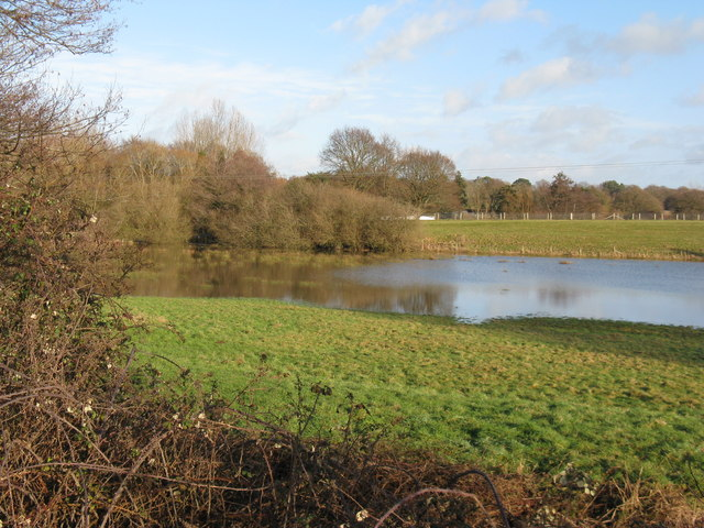 Flooded meadow near Winterfield Farm