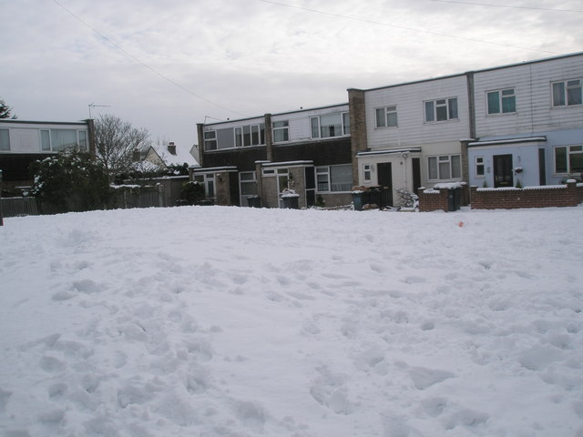 A snowy Juniper Square (4)