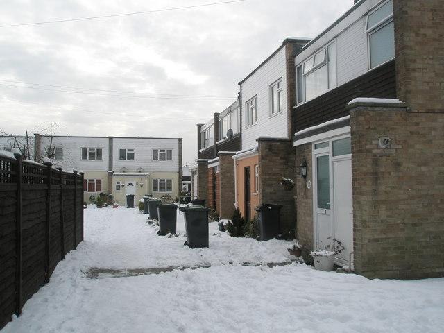 A snowy Juniper Square (3)